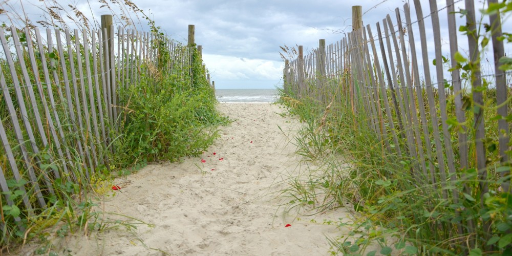 Myrtle Beach Photographers love the dunes here at the beach. Imagine your family, senior, or bride walking into this beach access for a snapshot!